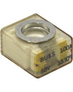 Samlex Replacement Fuse, 100Amp