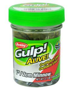 """Berkley Gulp! Alive! 1"""" Minnow"""