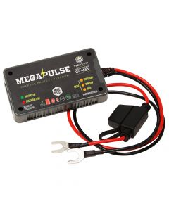 Megapulse VEE System MK5 Battery Degradation Eliminator