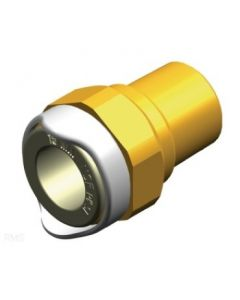 Whale Water Systems Adaptor 1/2in Npt Male 15mm