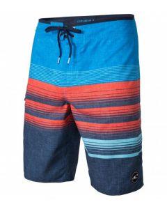 O'Neill Men's Lennox Boardshorts