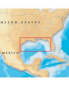 Navionics Platinum Plus 907ppgulf Of Mexico Sd